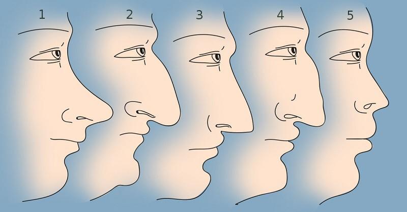 Форма носа, определяющая характер человека
