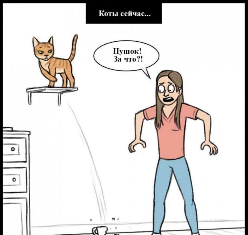 8 картинок, показывающих разницу между котами сейчас и котами до нашей эры