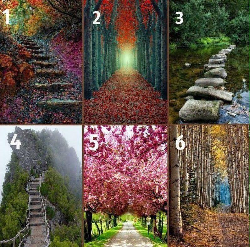Тест по картинке: раскройте тайны вашего жизненного пути