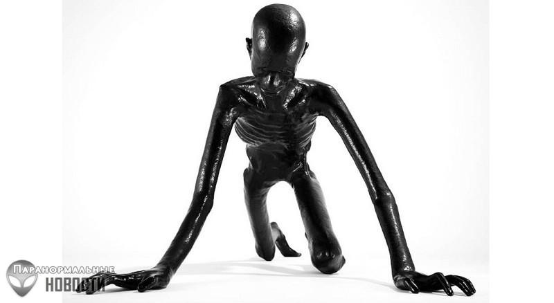 Житель США три раза видел необычное черное существо, меняющее форму