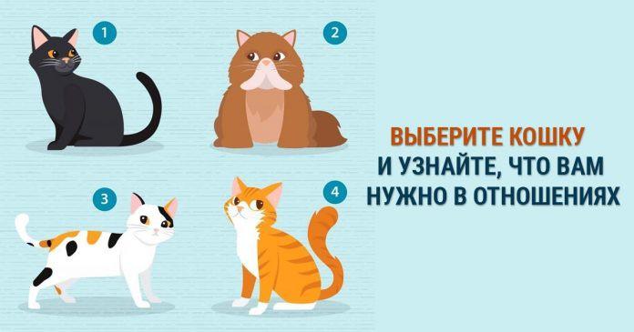 Тест по картинке: узнайте, какой партнер сделает вас счастливыми