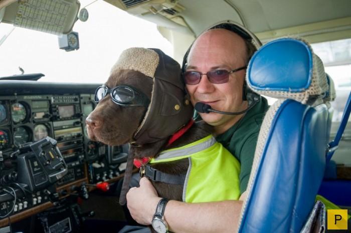 10 трогательных фотографий, подтверждающих дружбу между человеком и собакой