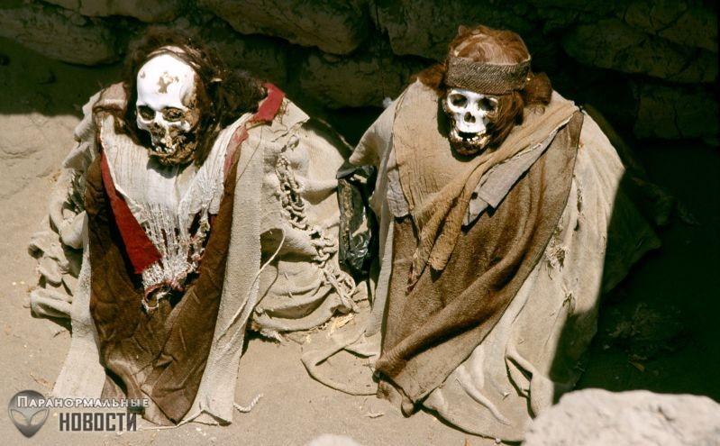 Бабушка забрала руку мумии и навлекла на себя проклятие - Паранормальные новости