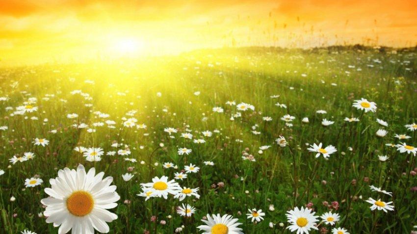 Астролог Володина назвала июнь судьбоносным месяцем