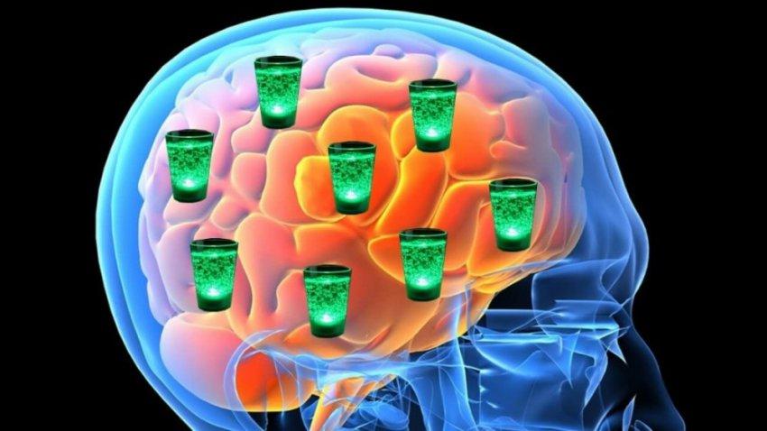Алкоголь продолжает разрушать мозг неделями позже последней дозировки