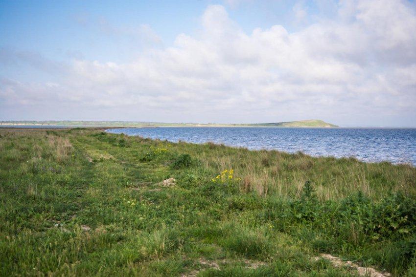 За браконьерский вылов креветки в Кизилташском лимане двое жителей черноморского посёлка могут лишиться свободы