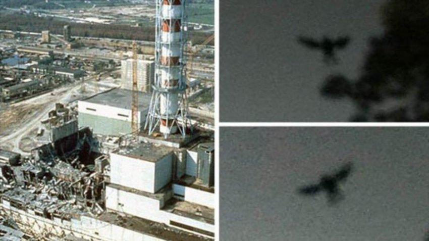 Жуткая птица в небе перед чернобыльской катастрофой: ученые о странном наблюдении