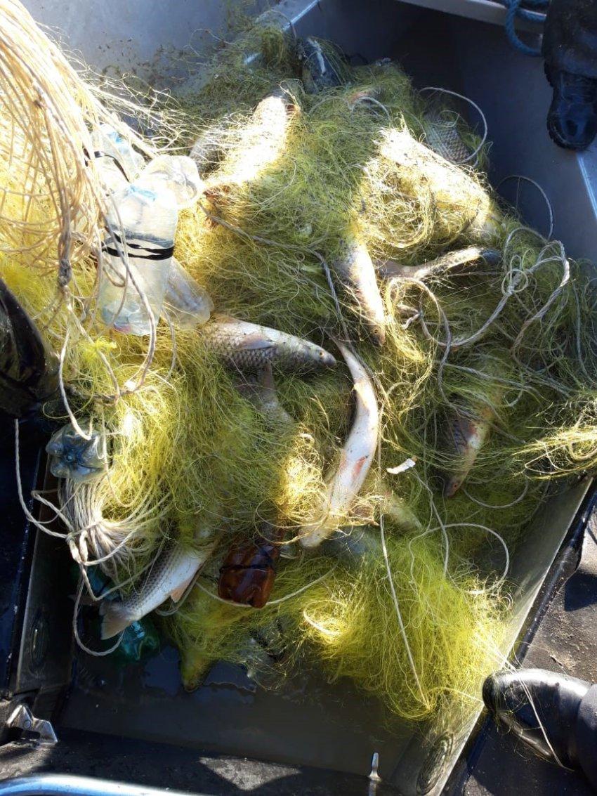 На берегу Ахтанизовского лимана пограничники с поличным задержали браконьера