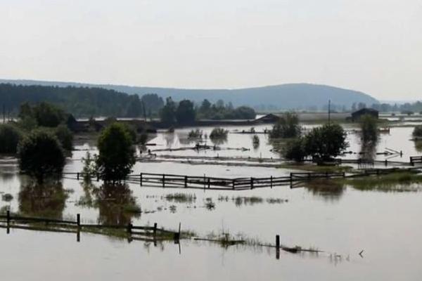 Наводнение в Иркутской области 2019: сколько погибло, последние новости