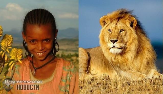 Львы спасли девочку от похитителей и другие истории о необычных животных-защитниках - Paranormal-news.ru