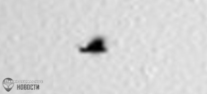 На Марсе летают птицы? - Paranormal-news.ru