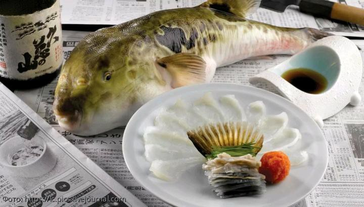 Девять красивых экзотических блюд, которые смертельно опасны для туристов