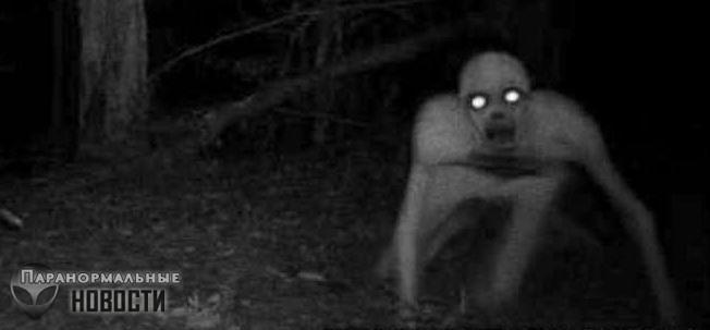 «Вокруг нашего дома бегали монстры!»: Женщина с детьми сбежала из коттеджа   Загадочные существа   Паранормальные новости