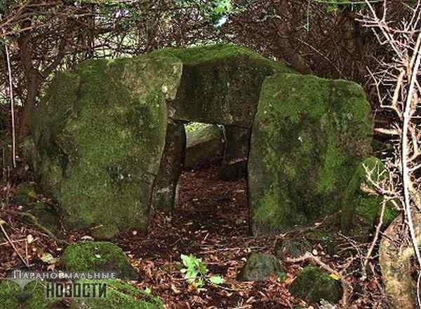 Аномальные явления и странные «первобытные люди» в ирландском лесу Баллиболи Форест | Аномальные зоны | Паранормальные новости