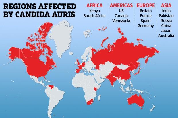 Активизировался смертельный грибок: глобальное потепление породило новую опасность