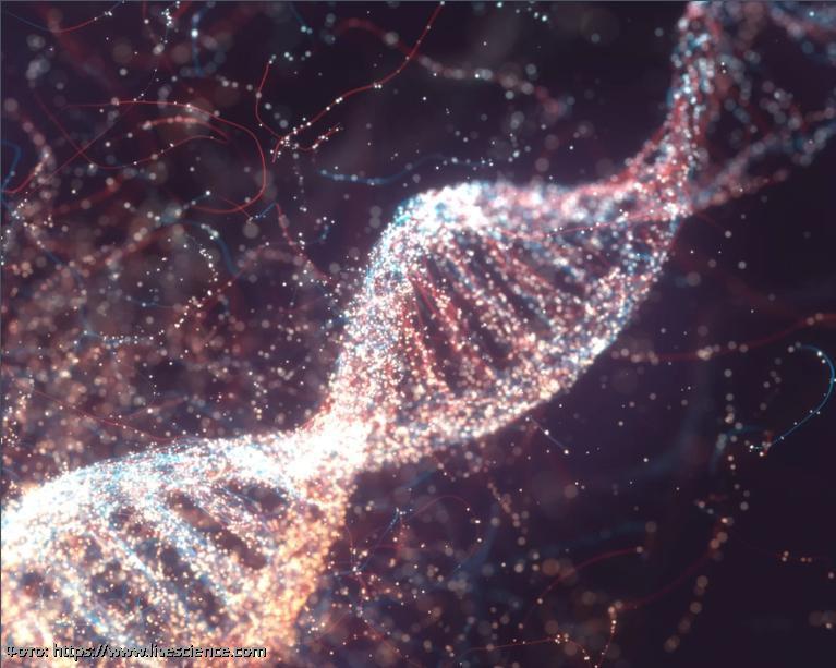 При лечении слепоты у людей будут использовать редактирование генов CRISPR