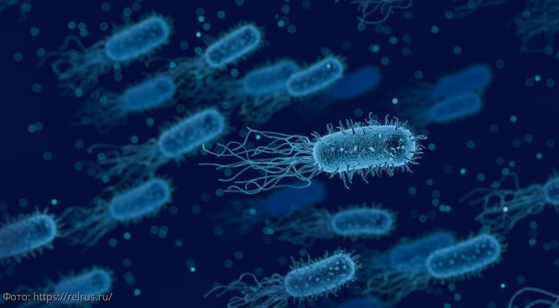 В ближайшее время в Европе может появиться новый вид пневмонии