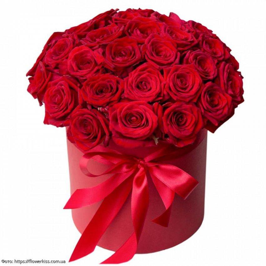 Любимые цветы для каждого знака Зодиака