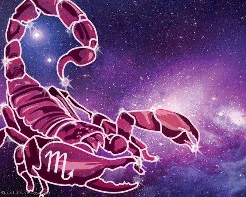 Скорпион - самый мстительный и волевой знак Зодиака