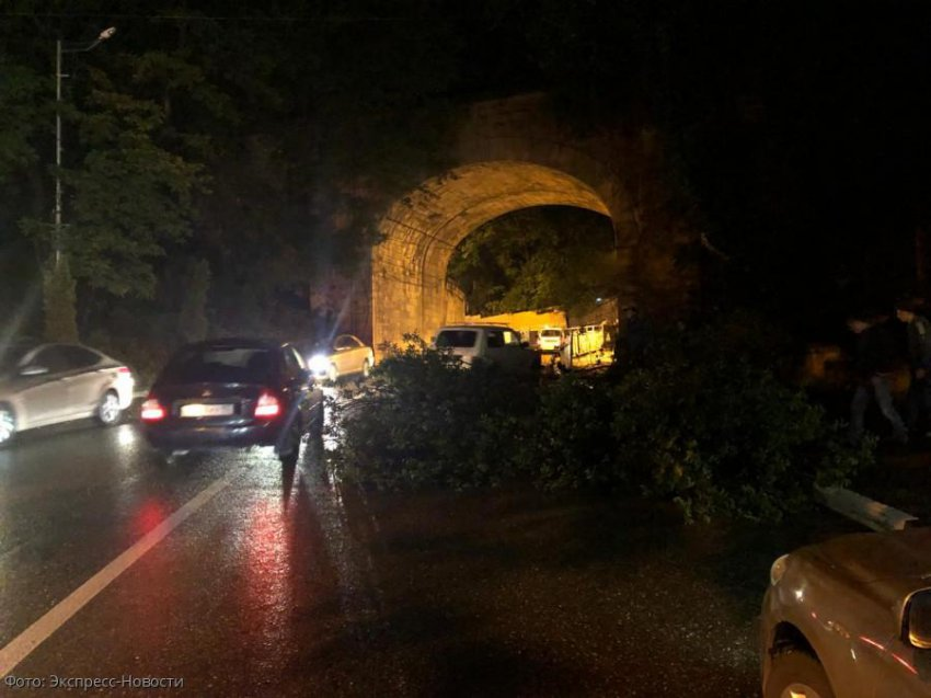 Упавшее дерево перегородило дорогу в Кисловодске