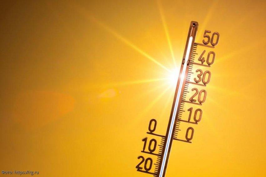 Россию в ближайшие несколько лет ждет аномальная жара