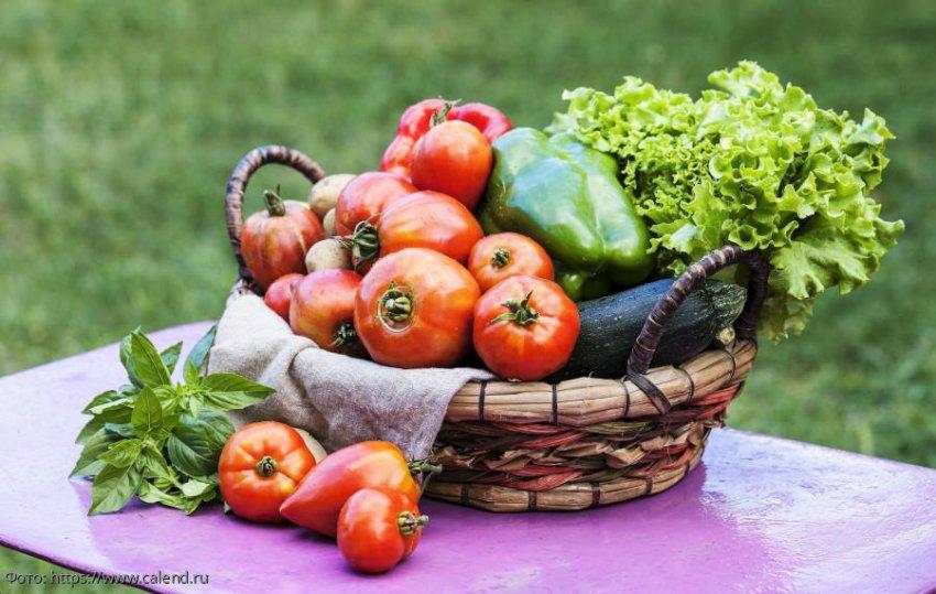 Лунный календарь садовода-огородника с 22 по 28 июля