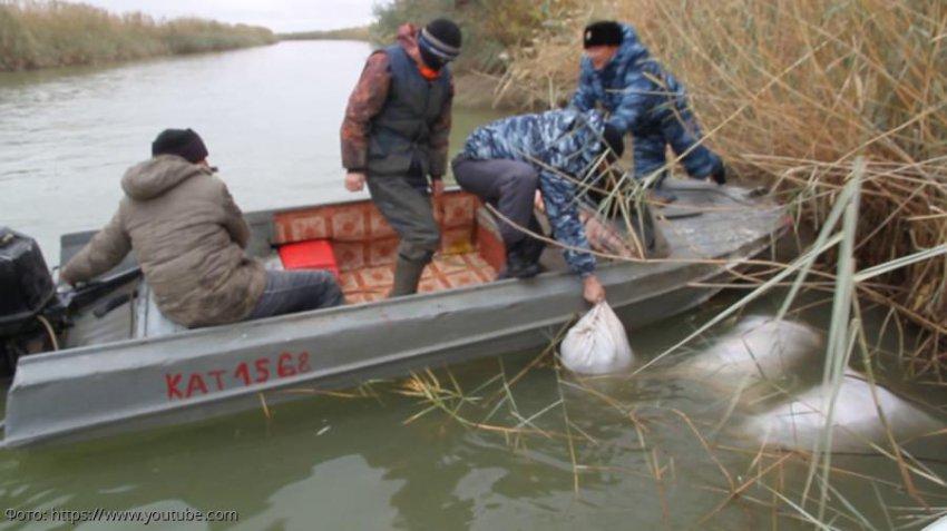 Браконьера из Темрюкского района осудили за незаконную добычу морских биоресурсов