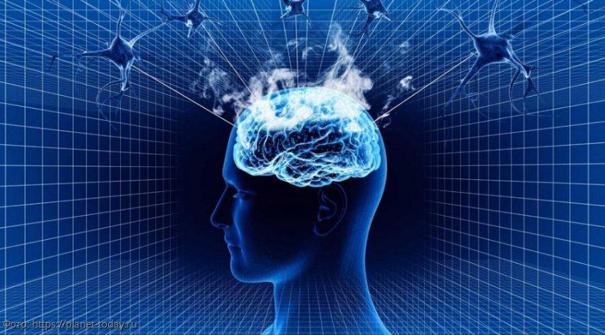 Самые главные особенности и тайны человеческого мозга