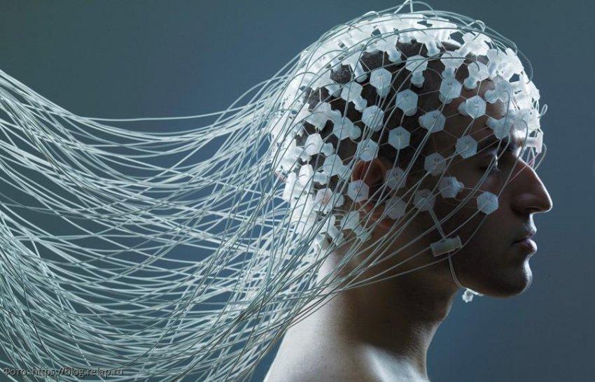 Выявлены особенности работы мозга преступников