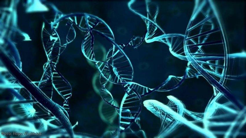 Особенности генетической памяти человека