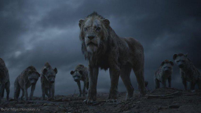 Прообразом Симбы из «Короля Льва» стал львенок из Далласа