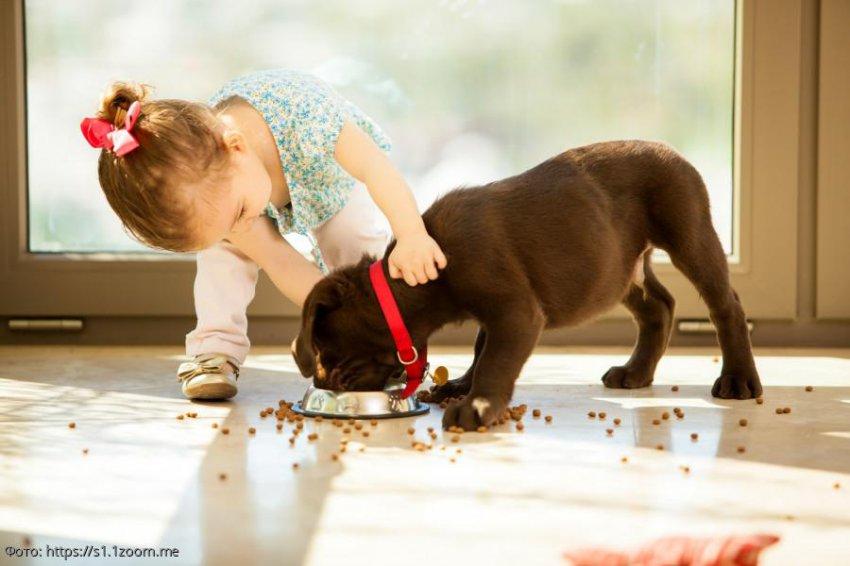 10 причин, почему нужно завести ребенку собаку