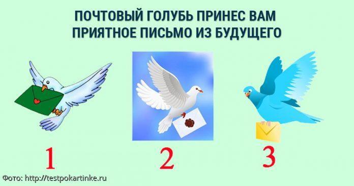 Выберите голубя и получите послание на эту неделю