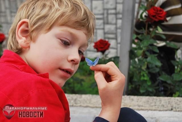 После смерти парня, обожавшего бабочек, красивые бабочки стали прилетать к его сестре | Мистика | Паранормальные новости