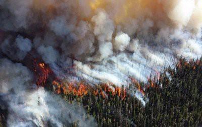 Ученые рассказали об объемах выбросов СО2 от лесных пожаров в Сибири