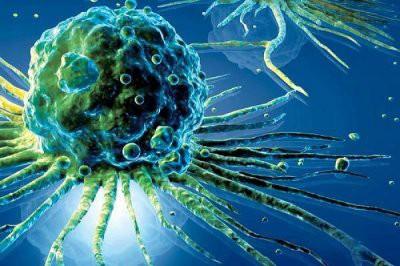 Ученые установили, в каком возрасте снижается риск развития рака