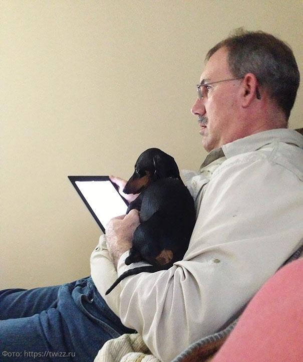 10 фото отцов, которые не хотели собаку, а теперь любят её, как члена семьи