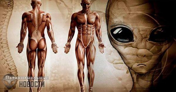 Теория Планеты-тюрьмы: Люди и есть самые настоящие инопланетяне на Земле | Загадки человека | Паранормальные новости