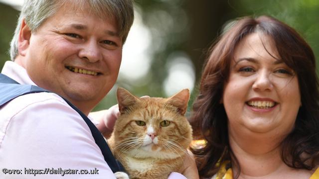 Супруги забыли купить своему коту корм и стали миллионерами