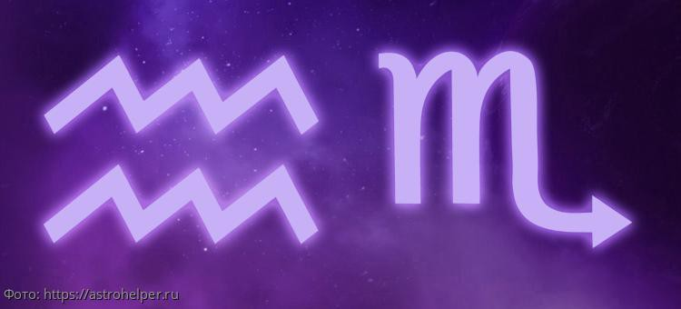 Астролог Василиса Володина рассказала об умственных способностях знаков зодиака