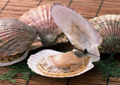 Медики рассказали, насколько полезен морской гребешок
