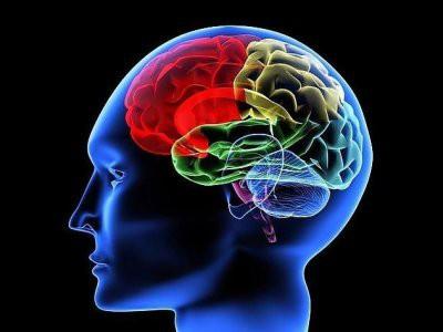 Ученые ответили, является ли IQ показателем ума
