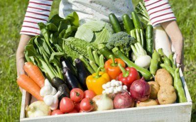 Эксперт рассказал, как покупать самые вкусные продукты