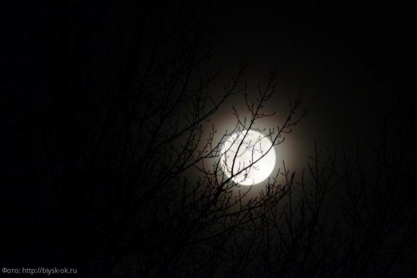 Лунный прогноз красоты и здоровья на 3 августа