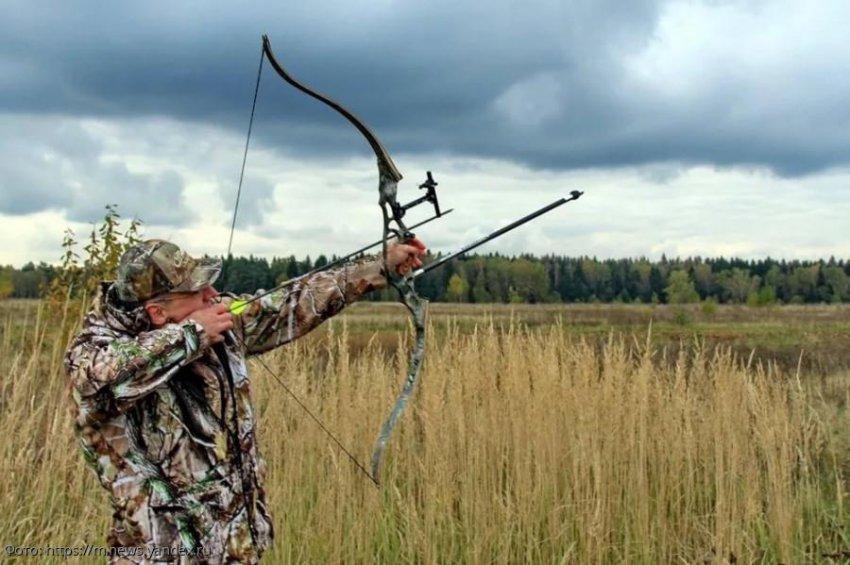 Россиянам разрешили охотиться при помощи лука и стрел