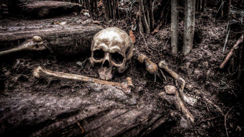 Определили личность по ДНК: ученые узнали, кем был «вампир», умерший 200 лет назад