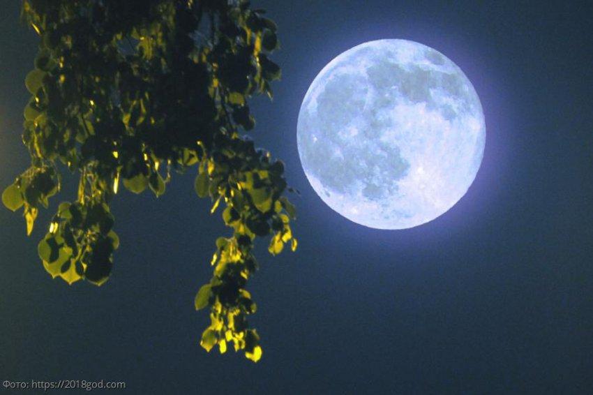 Лунный прогноз красоты и здоровья на 5 августа