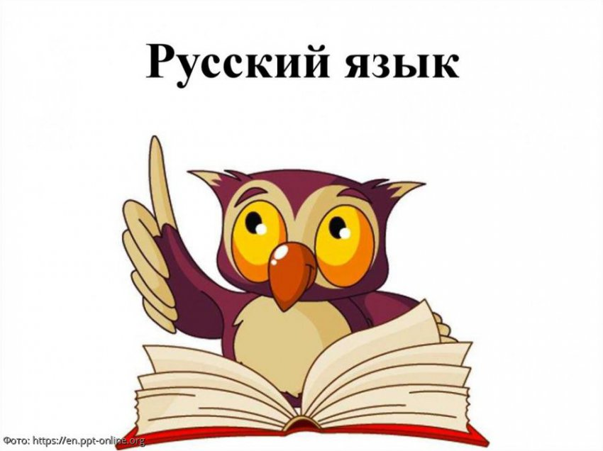 Профессиональный филолог Гасан Гусейнов рассказал о современных тенденциях русского языка