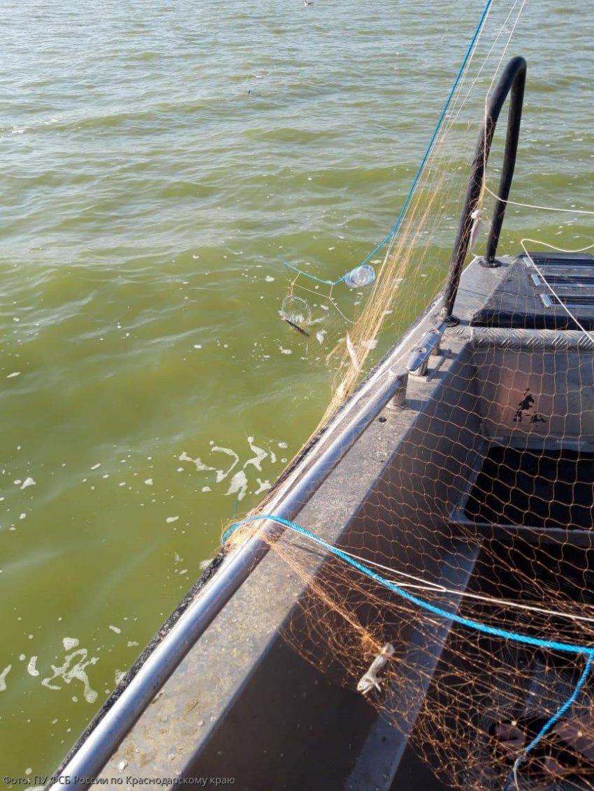 В акватории Таганрогского залива вытралено 1250 метров сетей