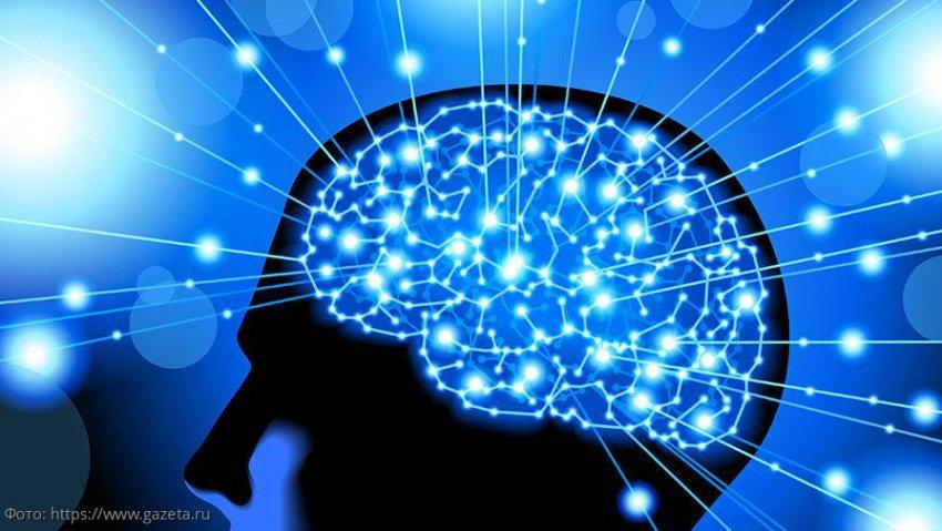Нейропсихолог Наталья Семенова опровергла основные представления о левшах